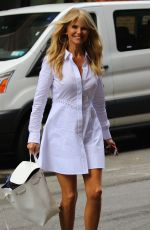 CHRISTIE BRINKLEY Out and About in New York 06/20/2017