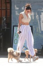 EIZA GONZALEZ Out for Lunch in Los Angeles 06/26/2017