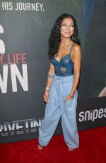 JHENE AIKO at Chris Brown: Welcome to My Life Premiere in Los Angeles 06/06/2017