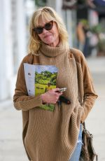 MELANIE GRIFFITH Out and About in Los Angeles 05/31/2017