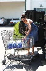 NICOLE MURPHY Out for Grocery Shopping at Bristol Farms in Beverly Hills 06/09/2017