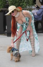 PHOEBE PRICE Out and About in Beverly Hills 06/07/2017