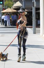PHOEBE PRICE Out with Her Dog in Beverly Hills 06/02/2017