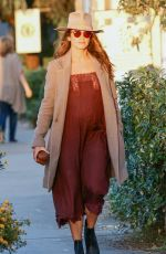 Pregnant NIKKI REED Out and About in Venice 06/08/2017