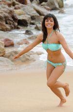 ROXANNE PALLETT in Bikini at a Beach in Santorini 06/16/2017