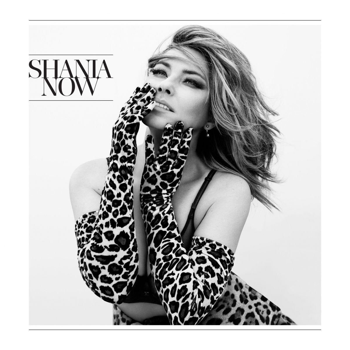 SHANIA TWAIN - Now Album Cover