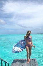TARA LIPINSKI in Bikini, 06/27/2017 Instagram Pictures