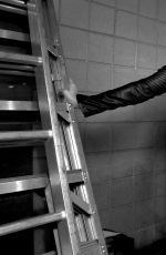 WWE - Extreme Rules Photoshoot