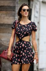 ALESSANDRA AMBROSIO Out Shopping in Venice Beach 07/26/2017