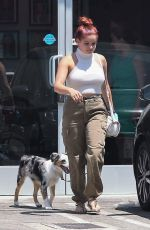 ARILE WINTER Out with Her Dog in Studio City 07/18/2017