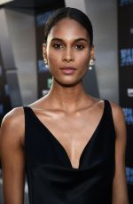 CINDY BRUNA at Valerian and the City of a Thousand Planets Premiere in Hollywood 07/17/2017