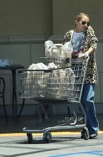 NICOLE RICHIE Shopping at Gelson