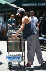 ROSELYN SANCHEZ Out for Grocery Shopping in Beverly Hills 07/20/2017