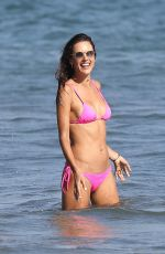ALESSANDRA AMBROSIO in Bikini at a Beach in Malibu 08/06/2017