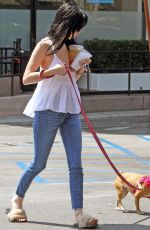 ALESSANDRA TORRESANI Out With Her Dog in Los Angeles 08/23/2017