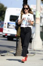 DAKOTA JOHNSON Out and About in Los Angeles 08/29/2017