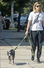 KATE MARA and Jamie Bell Walks Their Dogs in Silverlake 08/12/2017