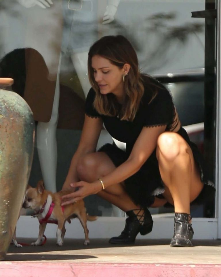 KATHARINE MCPHEE Out with Her Dog in Los Angeles 10/18
