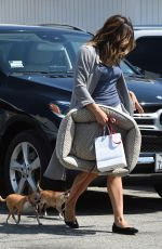 KATHARINE MCPHEE Out With Her Dogs in Beverly Hills 08/22/2017
