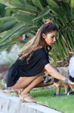LEILANI DOWDING Walks Her Dogs Out in Hollywood Hills 08/06/2017