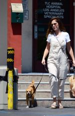 MINKA KELLY Leaves Local Vets with Her Dogs in West Hollywood 08/24/2017