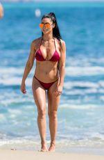 NATALIE EVA MARIE in Bikini on the Set of a Photoshoot on Laguna Beach 08/16/2017