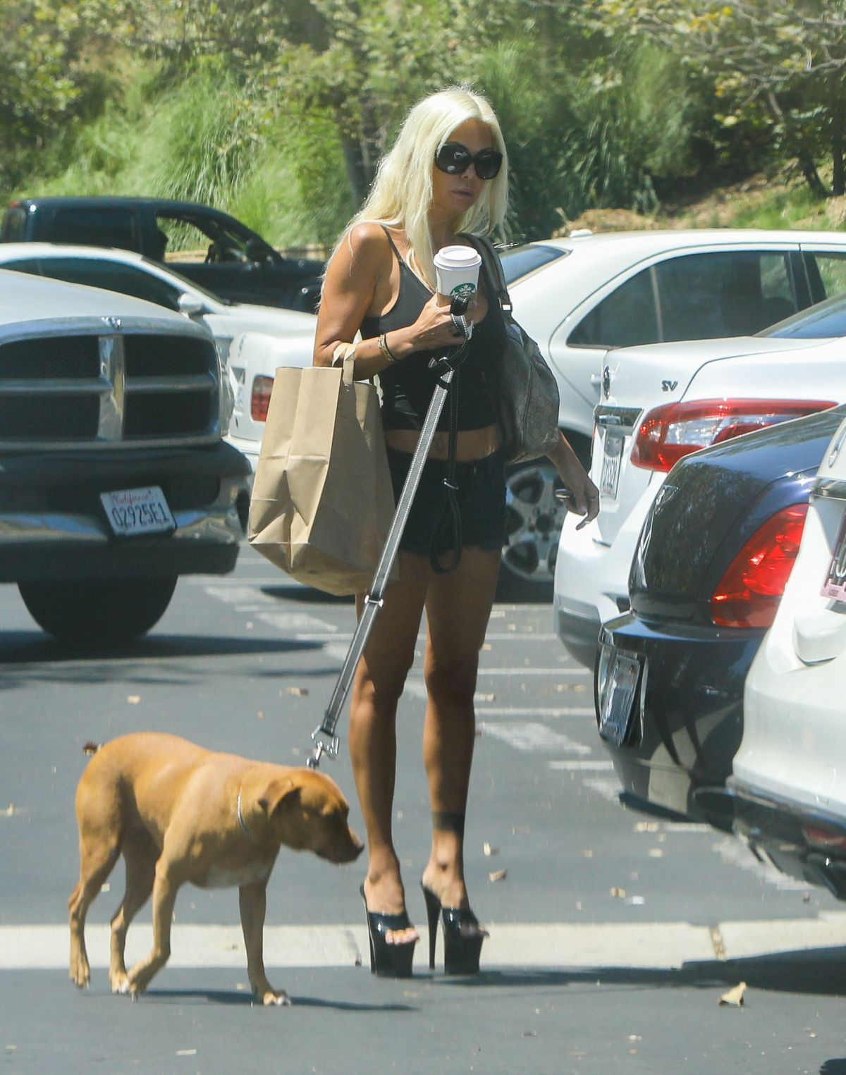 SHAUNA SAND Walks Her Dog Out in Malibu 08/19/2017