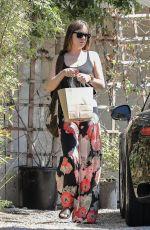 DAKOTA JOHNSON Out Shopping in Los Angeles 08/21/2017