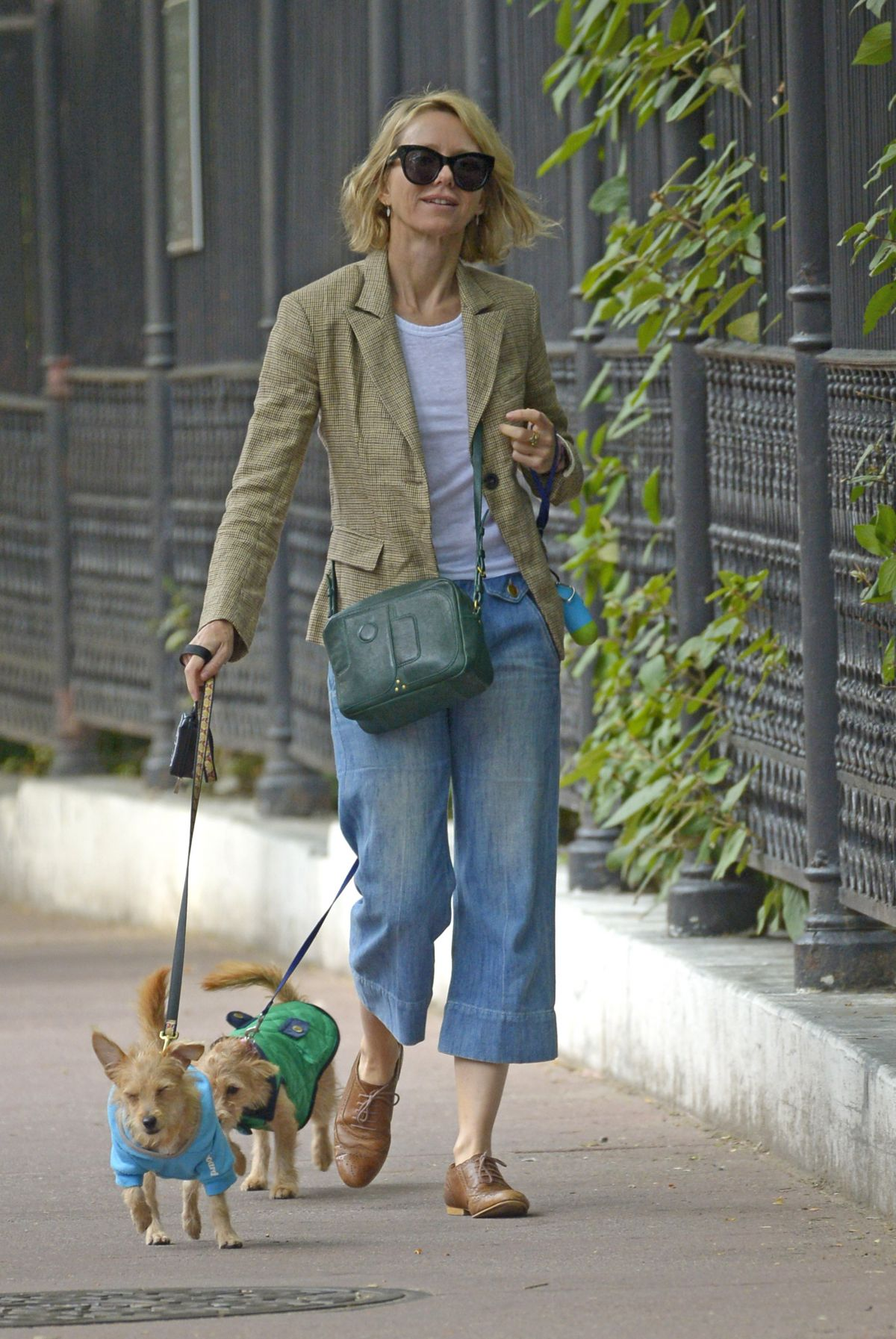 NAOMI WATTS Out with Her Dogs in New York 09/11/2017