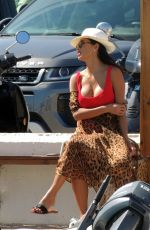 NICOLE SCHERZINGER in Swimsuit at a Boat in Ibiza 06/09/2017