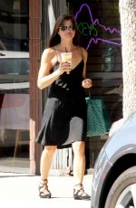 SELMA BLAIR Out for Iced Coffee in Studio City 09/13/2017