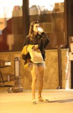 ALESSANDRA AMBROSIO Out Shopping for Halloween in Los Angeles 10/14/2017