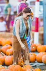 ALI LEVINE at a Pumpkin Patch in Los Angeles 10/21/2017