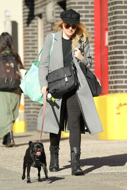 DAKOTA FANNING Out with Her Dog in New York 10/27/2017