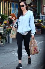 DAKOTA JOHNSON Shopping for a Wine in Los Angeles 10/13/2017
