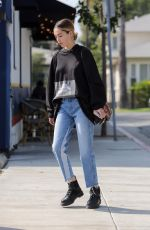 DELILAH HAMLIN Heading to Skin Treatment Session in West Hollywood 10/19/2017