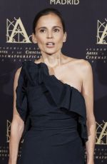 ELENA ANAYA at Academy of Motion Picture Arts and Sciences Photocall in Madrid 10/09/2017