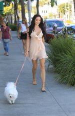 MARA TEIGEN Out with Her Dog in Beverly Hills 10/16/2017