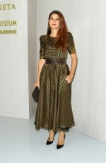 MARISA TOMEI at Hammer Museum Gala in the Garden Honoring Ava Duvernay in Los Angeles 10/14/2017