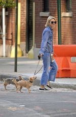 NAOMI WATTS Out Withe Her Dogs in New York 10/12/2017
