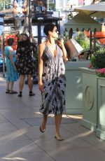NICOLE MURPHY Out Shopping in Hollywood 10/25/2017