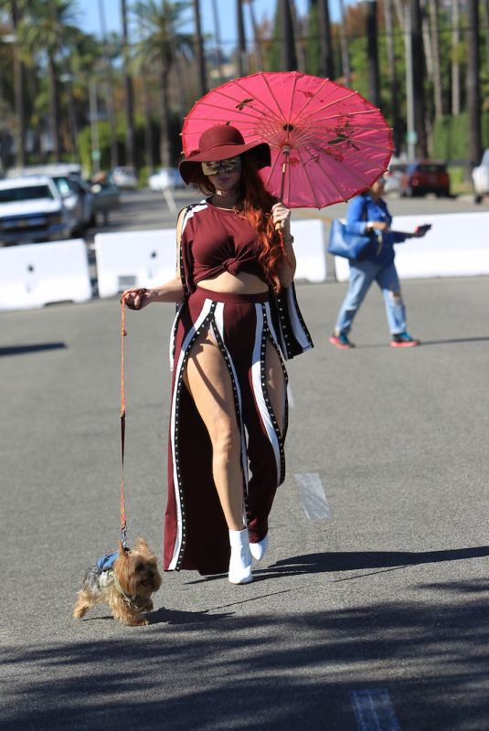 PHOEBE PRICE Walks Her Dog Out in Beverly Hills 10/21/2017