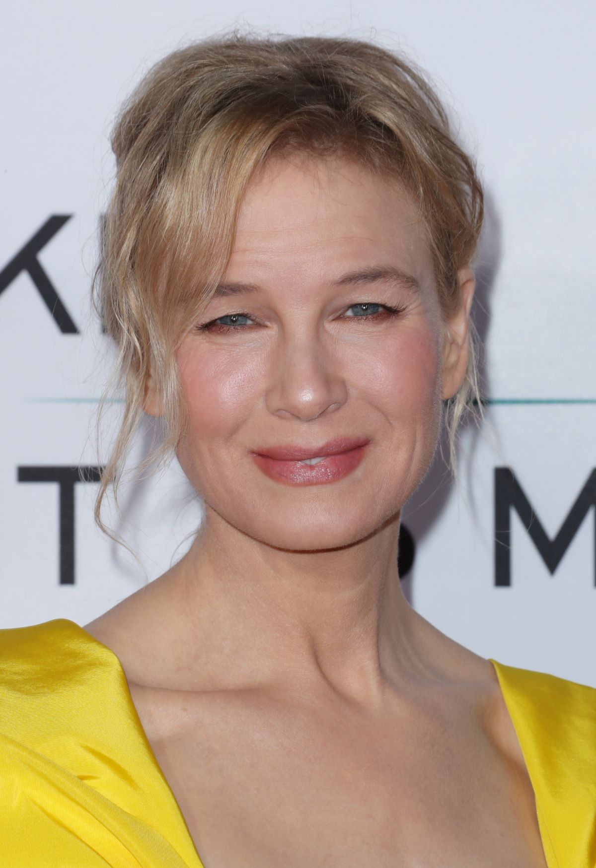 RENEE ZELLWEGER at Same Kind of Different As Me Premiere ...
