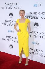 RENEE ZELLWEGER at Same Kind of Different As Me Premiere in Los Angeles 10/12/2017