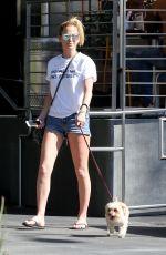SARAH HARDING Walks Her Dog in Los Angeles 10/06/2017