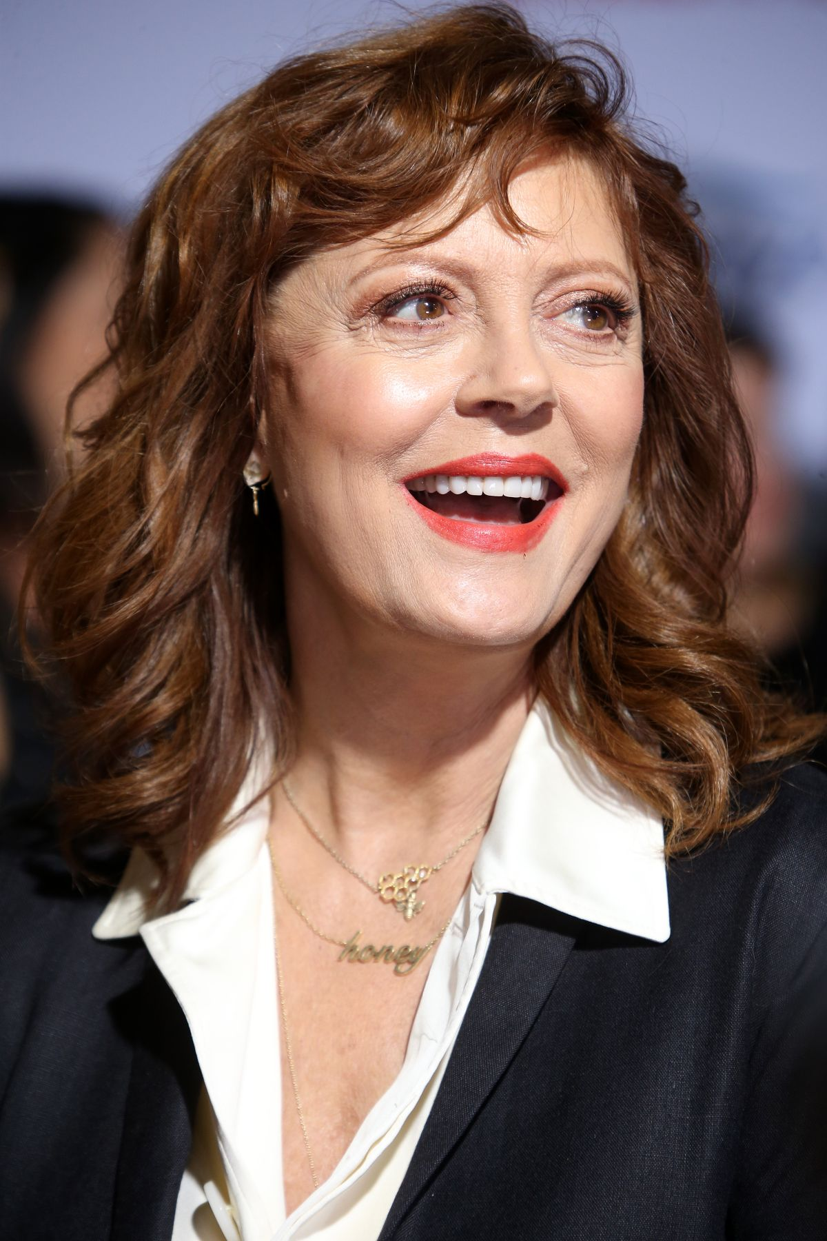 SUSAN SARANDON at A Bad Moms Christmas Premiere in Westwood 10/30 ...