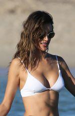 """ALESSANDRA AMBROSIO in Bikini at a Beach in Miami"""" 11/07/2017"""