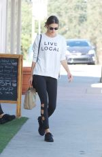 ALESSANDRA AMBROSIO Out in Los Angeles 11/26/2017