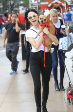 ALESSANDRA TORRESANI Out with Her Dog in Hollywood 11/17/2017