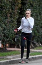 AMANDA SEYFRIED Out with Her Dog in West Hollywood 11/29/2017